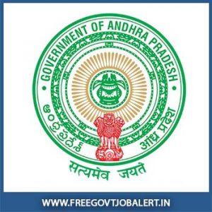 Govt Job In Andhra Pradesh   AP Govt Jobs 2019